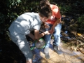 """""""Pêche"""" aux macro invertébrés vivant dans le fond du ruisseau de Radru"""