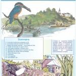 Inf'Eau Semois-Chiers n°18