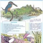 Inf'Eau Semois-Chiers n°19