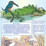 Inf'Eau Semois-Chiers n°4