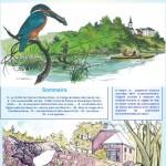 Inf'Eau Semois-Chiers n°7